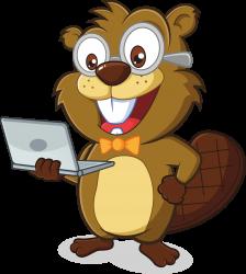 Beaver IT